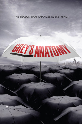 Poster Greys Anatomy 6° Temporada