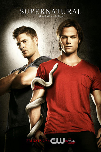 Poster Series Supernatural 6° Temporada