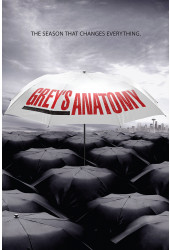 Poster Greys Anatomy 6ª Temporada - Séries