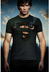 Poster Smallville 9ª Temporada - Séries