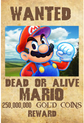 Poster Mario Bros Wanted