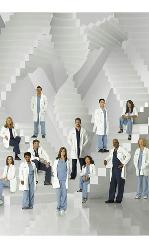 Poster Greys Anatomy 5° Temporada