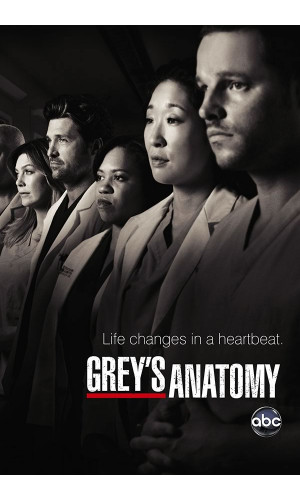 Poster Greys Anatomy