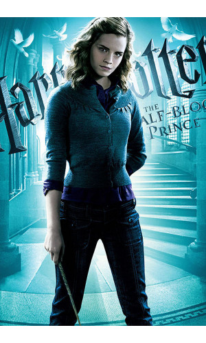 Poster Harry Potter E O Enigma Do Principe Hermione