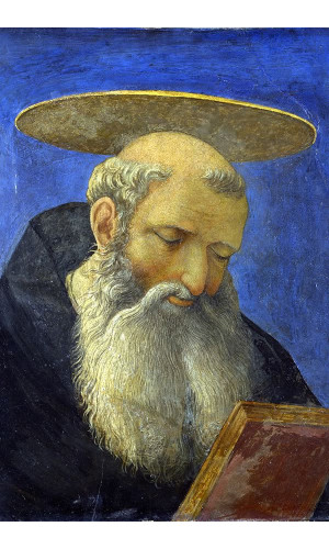 Poster domenico Veneziano - Head Of A Tonsured Bearded Saint