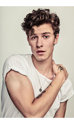 Poster Shawn Mendes - Pop